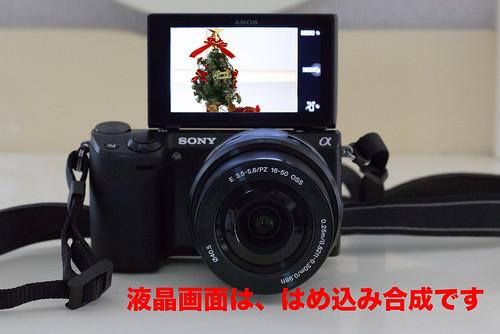 NEX-5R_09