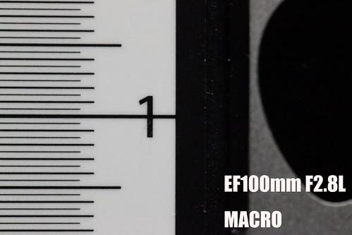 EF24-70mm_MACRO_06