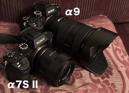 SONY α9 & α7S2_01