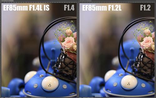 EF85mm F1.4L IS vs EF85mm F1.2L_07