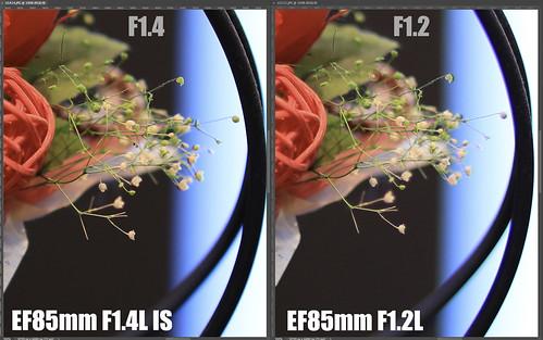 EF85mm F1.4L IS vs EF85mm F1.2L_08