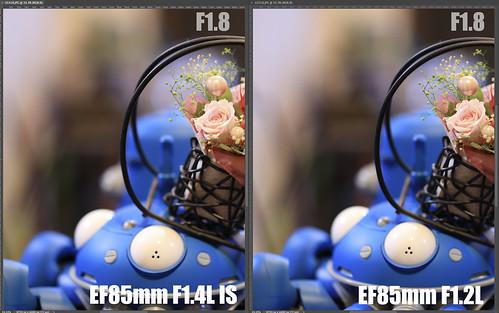EF85mm F1.4L IS vs EF85mm F1.2L_12