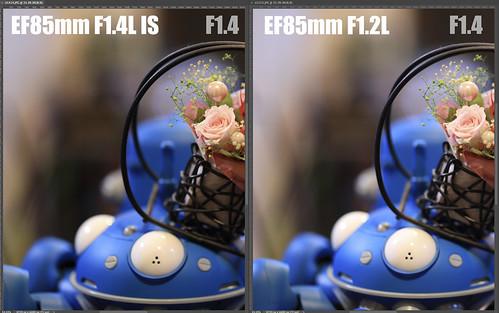 EF85mm F1.4L IS vs EF85mm F1.2L_09