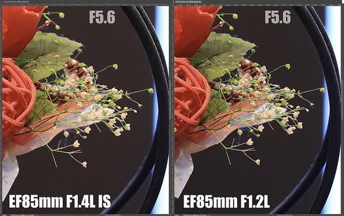 EF85mm F1.4L IS vs EF85mm F1.2L_16