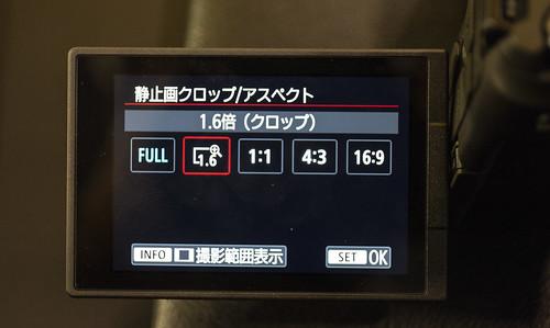 Canon EOS R_12