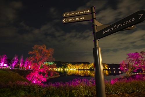 チームラボ & メッツァビレッジ 森と湖と光の祭 IN 宮沢湖