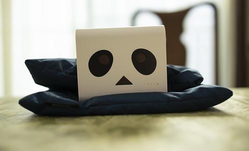 Danboard Battery Panda white_11