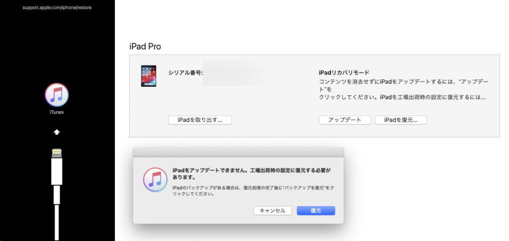iPad Pro 起動セズ