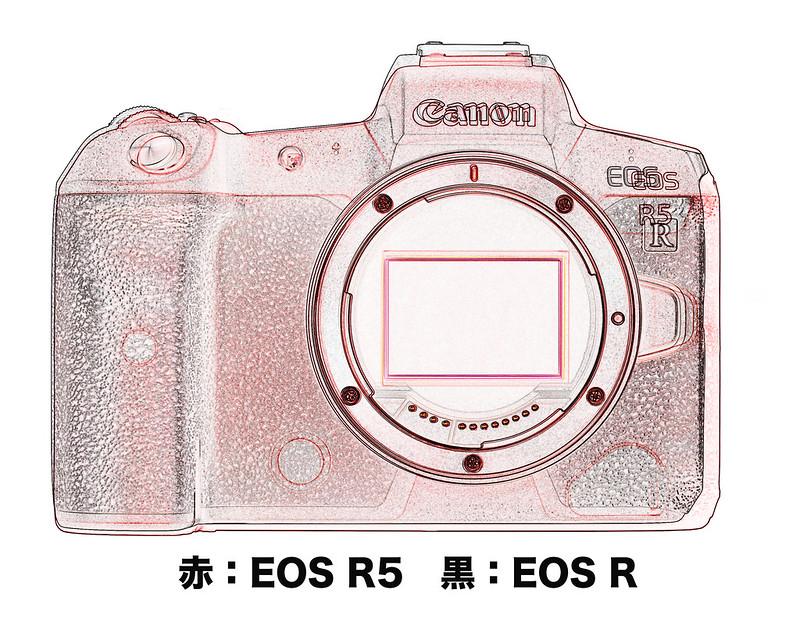EOS R5 & EOS R