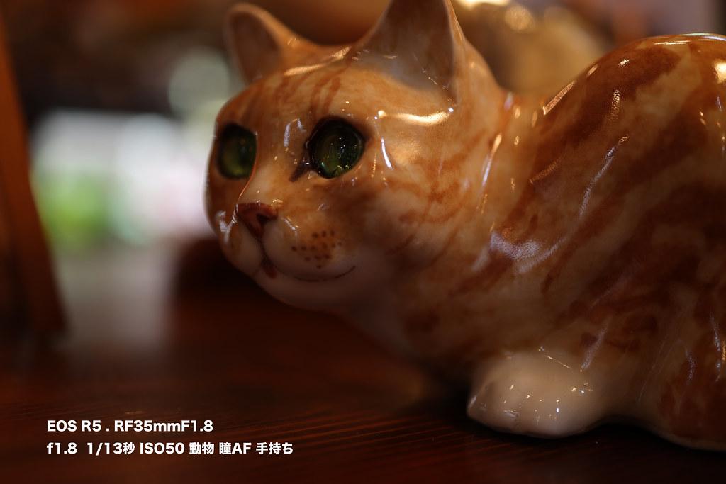 EOS R5 動物瞳AF_01