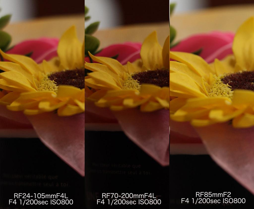 RF85mm比較_05