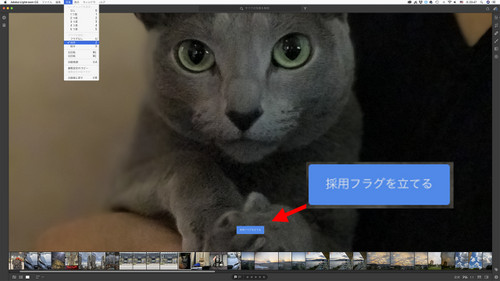 Adobe_lightroom_cc_04_2