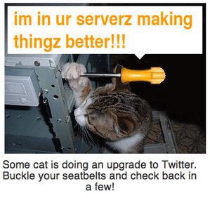ネコが支えるTwitter